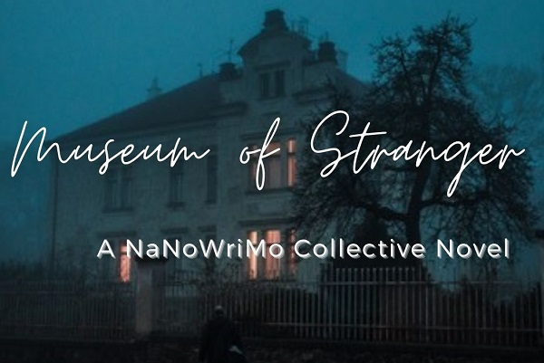 NaNoWriMo 2020… Here We Go!